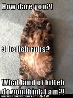 How dare you?!   3 belleh rubs? What kind of kitteh do you think I am?!