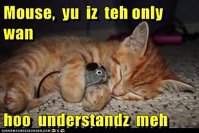 Mouse,  yu  iz  teh only  wan  hoo  understandz  meh