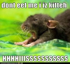 dont eet me i iz kitteh  HHHHIIISSSSSSSSSSS