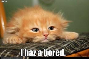I haz a bored.