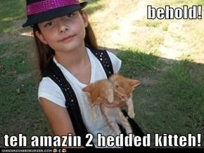 behold!   teh amazin 2 hedded kitteh!