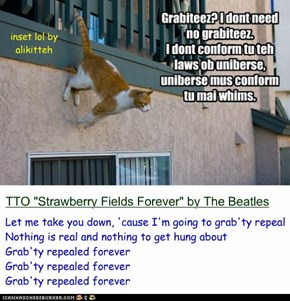 """Above The Law[s]...Of Physics"" (TTO ""Strawberry Fields Forever"" by The Beatles)"