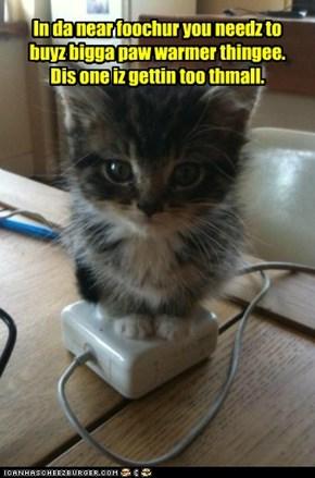 Iz a gwowin kitteh kat y'know.