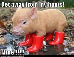 Get away from my boots!  Mine!!!!!!