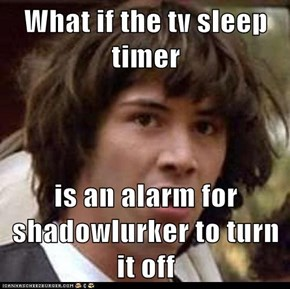 What if the tv sleep timer  is an alarm for shadowlurker to turn it off