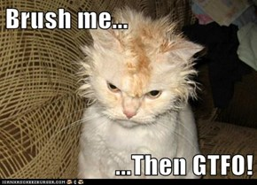 Brush me...  ...Then GTFO!