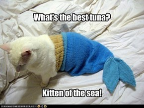 What's the best tuna?