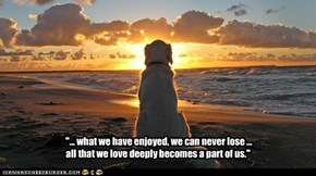 """... what we have enjoyed, we can never lose ...                                                                            all that we love deeply becomes a part of us."""