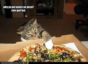 why yu put plantz on pizza? ruin gud fud.