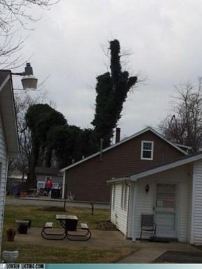 Eff You Too, Tree!