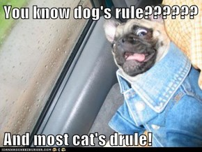 You know dog's rule??????  And most cat's drule!