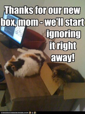 Thanks for our new box, mom - we'll start