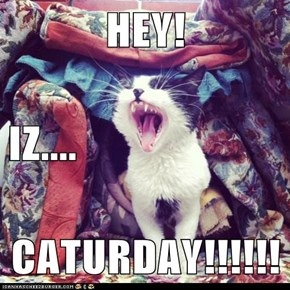 HEY! IZ.... CATURDAY!!!!!!
