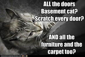 ALL the doors Basement cat? Scratch every door?