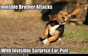 With Invisible Surprise Ear-Pull.