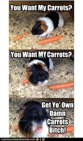 Archie Wants His Carrots To Himself