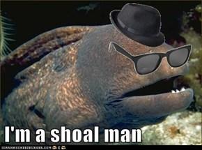 I'm a shoal man
