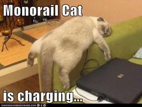 Monorail Cat  is charging...