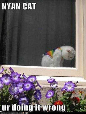NYAN CAT  ur doing it wrong