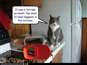 It was a terrible accident, like most of what happens in this kitchen.