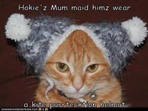 Hokie'z Mum maid himz wear  a kite purrtecktion helmut