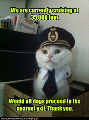 Captain Kitteh; Sorry, We Forgot the Parachutes