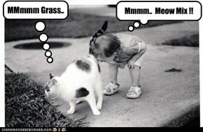 MMmmm Grass..