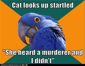 Paranoid Parrot: Can She Defend Me?