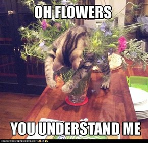 OH FLOWERS