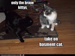 only the brave kittys