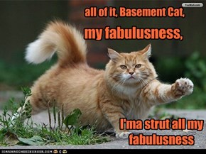 all of it, Basement Cat, my fabulusness, I'ma strut all my fabulusness