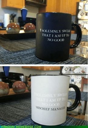 I Solemnly Swear That I'm Just Drinking Coffee