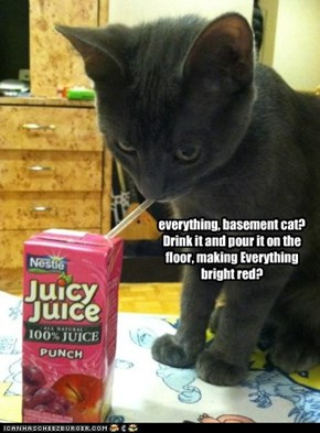 everything, basement cat? Drink it and pour it on the floor, making Everything bright red?