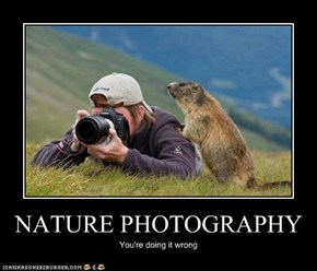 Animal Capshunz: Nature's This Way, Pal