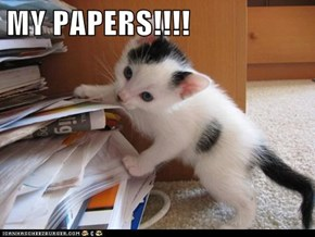 MY PAPERS!!!!