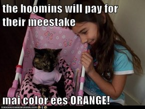 the hoomins will pay for their meestake  mai color ees ORANGE!