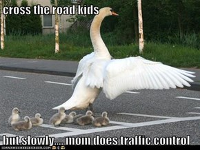 cross the road kids  but slowly.... mom does traffic control