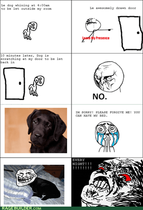 DOG, Y U NO LET ME SLEEP!