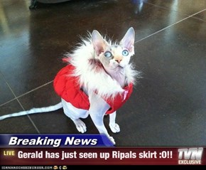 Breaking News - Gerald has just seen up Ripals skirt :O!!