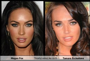 Megan Fox Totally Looks Like Tamara Ecclestone