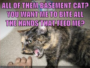 ALL OF THEM BASEMENT CAT?  YOU WANT ME TO BITE ALL THE HANDS THAT FEED ME?