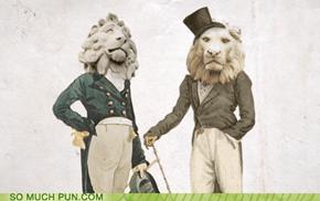 Dandy Lions