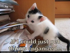 If I could just get things organized...