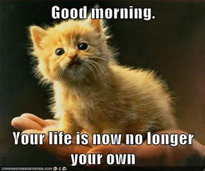 Good morning.  Your life is now no longer your own