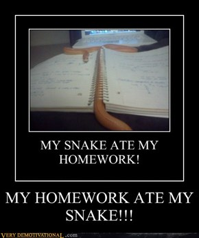 MY HOMEWORK ATE MY SNAKE!!!