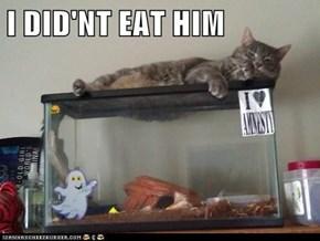 I DID'NT EAT HIM
