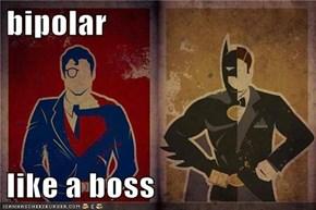 bipolar  like a boss