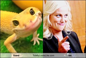 lizard Totally Looks Like les