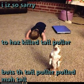 i iz so sarry to haz killed tail puller buts th tail puller pulled mah tail