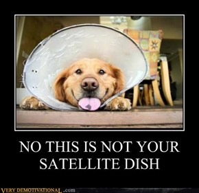 NO THIS IS NOT YOUR SATELLITE DISH
